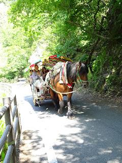 Shosenkyo horse carriage