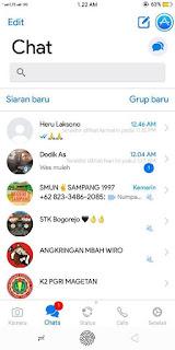GB WhatsApp iOS X v.8.0 unclone