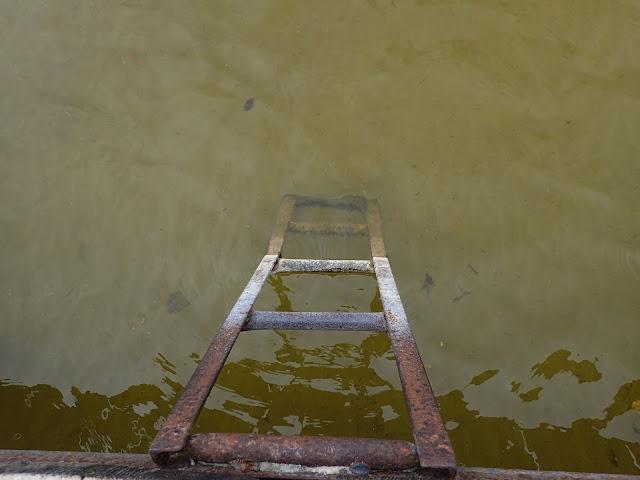 Do jeziora schodzi pordzewiała drabinka