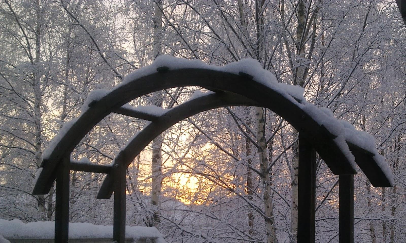 kaariportti, talvi, tammikuu, aurinko