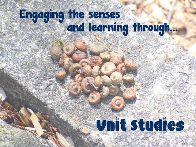 Unit Study, Unit Studies