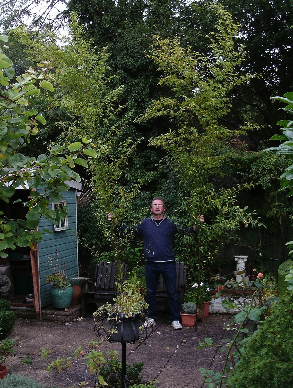 The Green Fingered Blog Six Things In The Garden For October