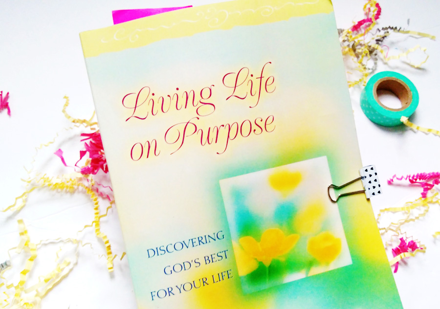 living life on purpose by lisa terkeurst