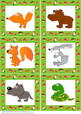 wild animals flashcards
