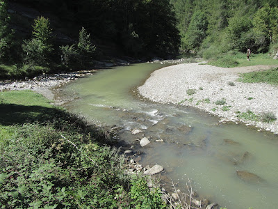Río Urbeltza - Las Casas de Irati - Parque Nacional de Irati - Navarra