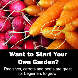 Organic Living Tips