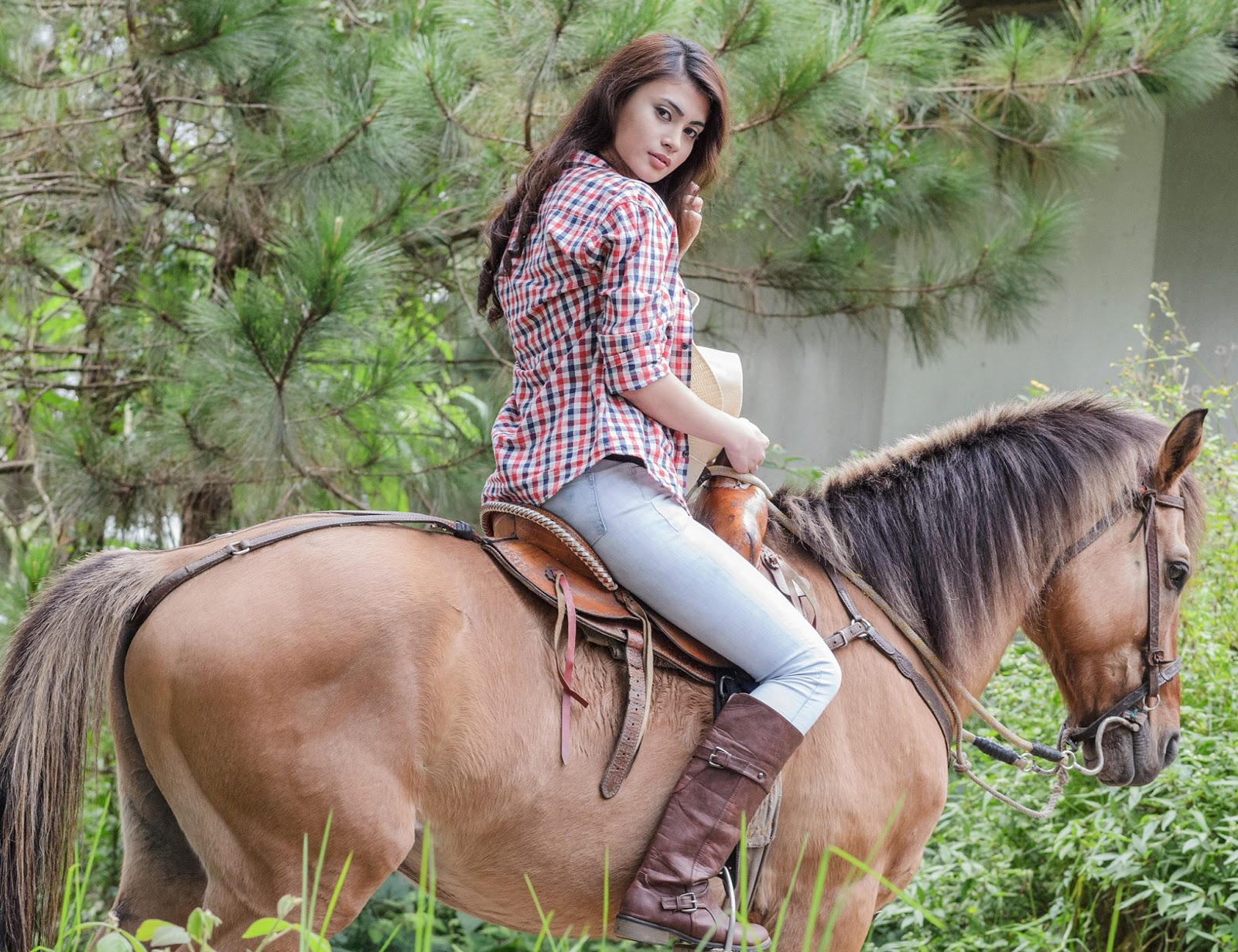 Equine Model Portrait Photography