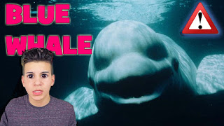 What is the Blue Whale suicide game? How to Protect your children from it?