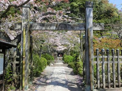 鎌倉:明王院