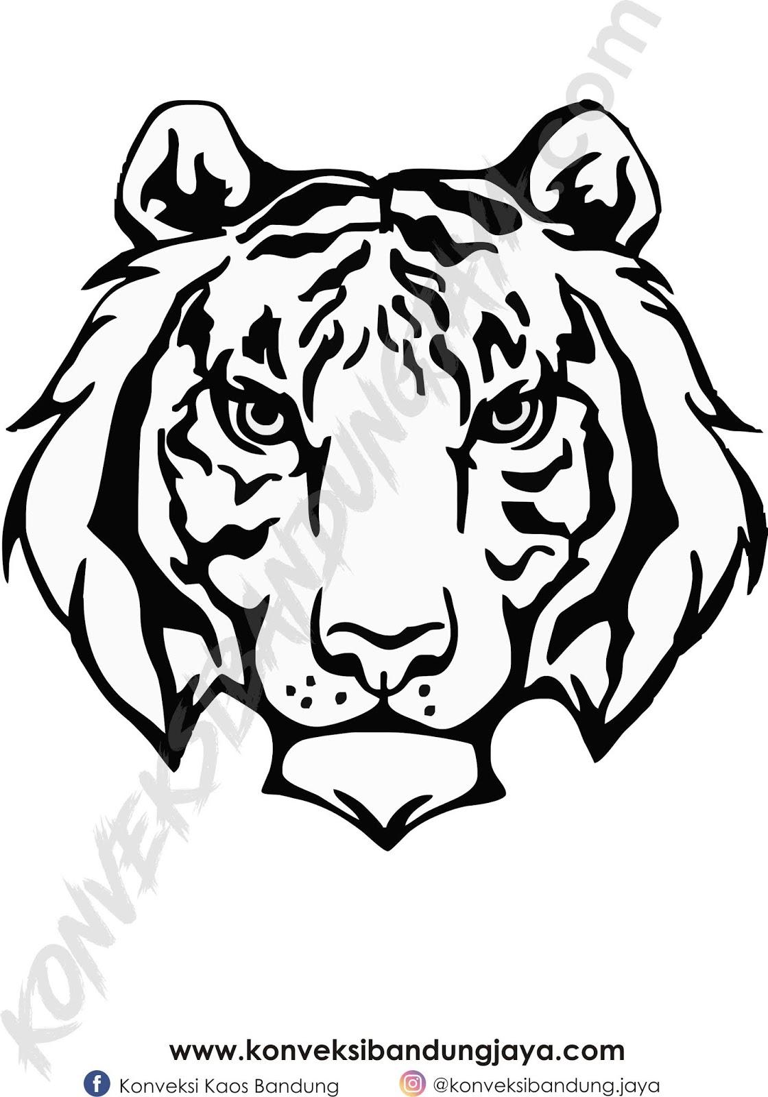 85 Gambar Harimau Warna Hitam Gambar Pixabay