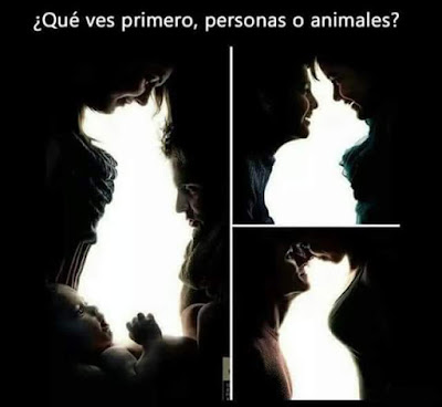 Personas o animales ?