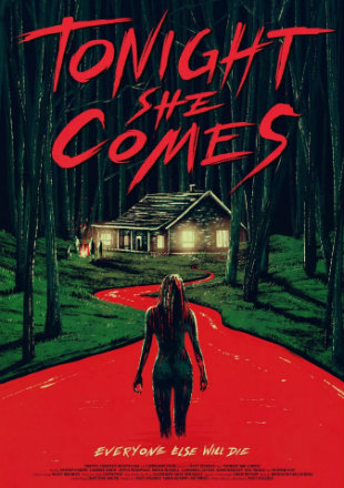 Tonight She Comes 2016 English 720p HDRip x264 600MB