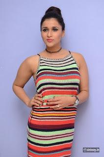 Mannara Chopra Stills at Jakkanna Platinum Disc Event
