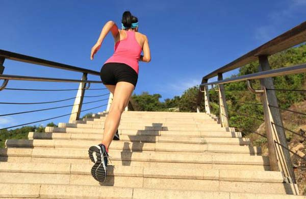 stair climber for weight loss