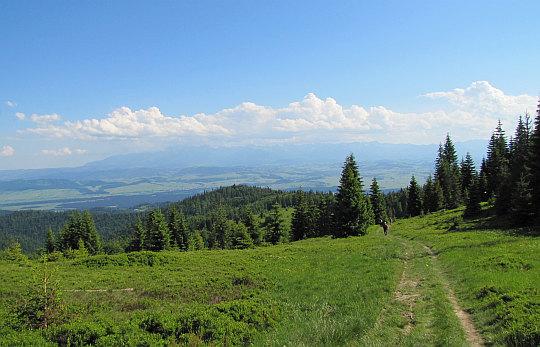 Widok z polany Cioski Łopuszańskie.