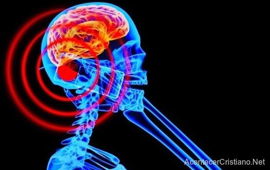Radiación de celulares afecta la salud