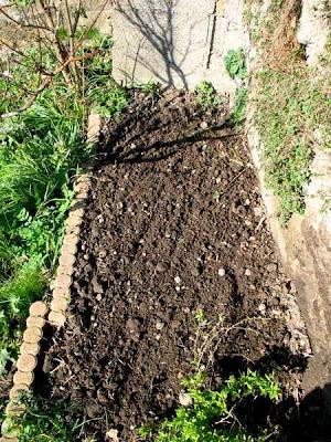preparer semis potager