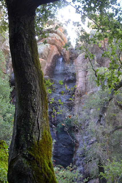 narrow canyon waterfall