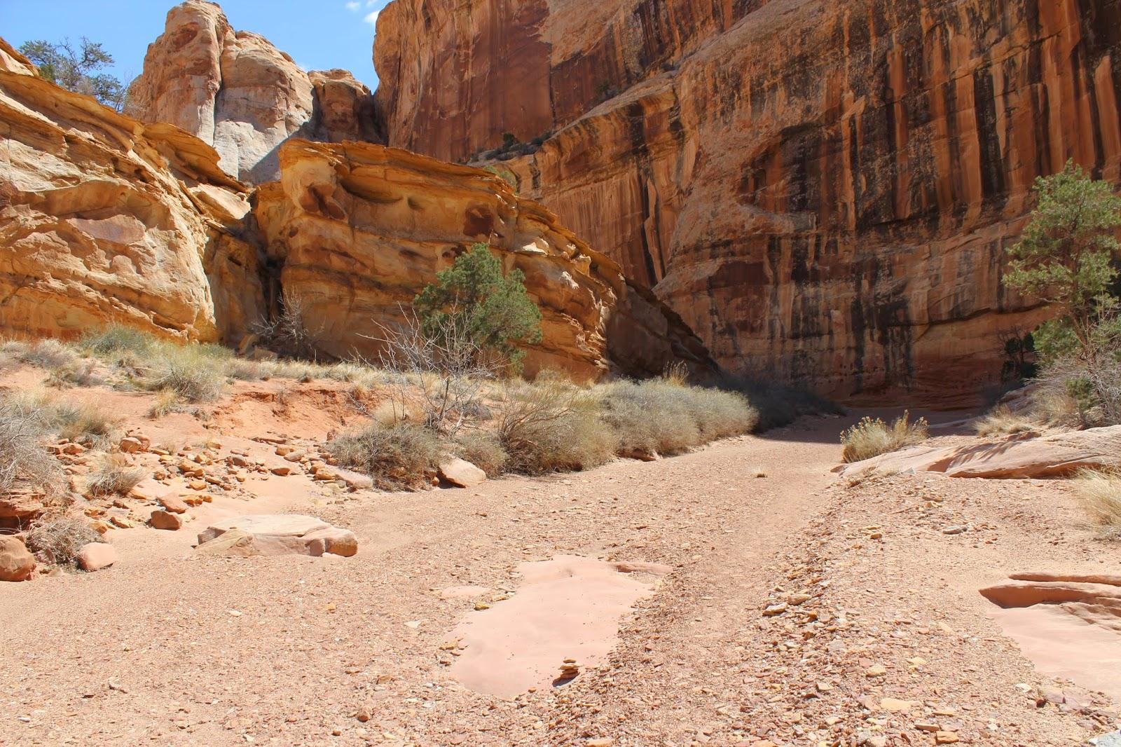 Gjhikescom Wildhorse Canyon