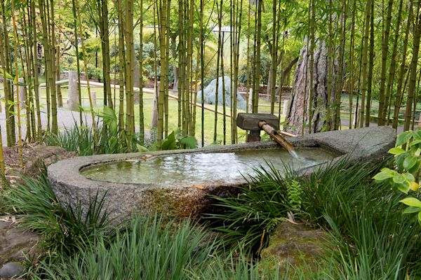 japanese bamboo garden design A GUIDE TO NORTHEASTERN GARDENING: This Month's Color in