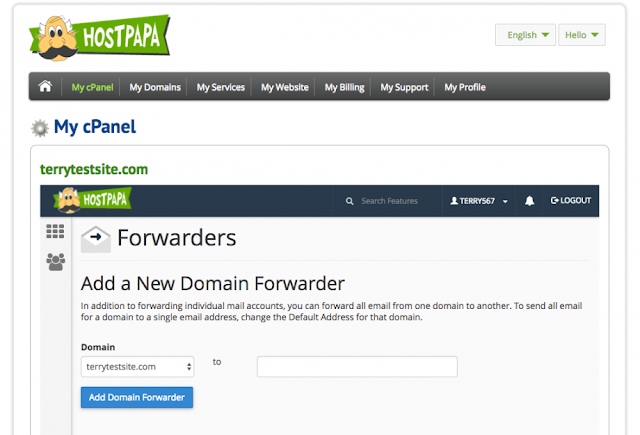 Primary Domain Name, Web Hosting, Hosting Guides, Hosting Learning