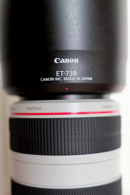 Canon EF70-300mm f/4-5.6L IS USM胖白 開箱