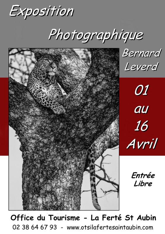 Bernard leverd expose lumi res d 39 afrique la fert saint - Office de tourisme la ferte saint aubin ...