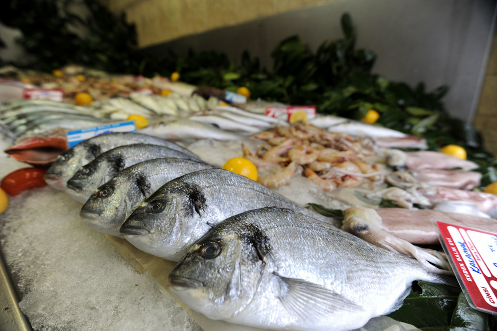 دراسة جدوى فكرة مشروع مطعم بيع أسماك وجمبرى فى مصر 2018