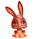 Littlest Pet Shop Tubes Rabbit (#434) Pet