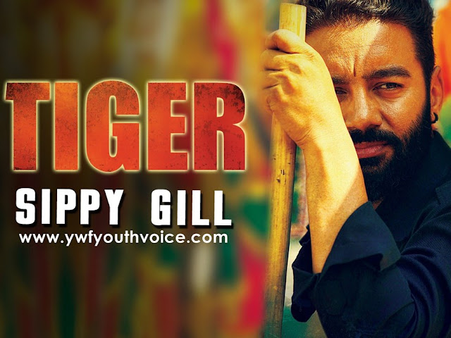 Tiger (Title Track) - Sippy Gill (2016) HD Punjabi Song, Download Tiger (Title Track) - Sippy Gill Full Clean HD Highquality Cover Wallpaper AlbumArt 720p, 1080p Video Song 320 Kbps MP3 VBR CBR Full Album or Original iTunes M4A Flac CD RIP