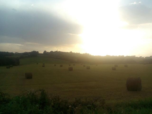 atardecer-rollos-hierba-asturias