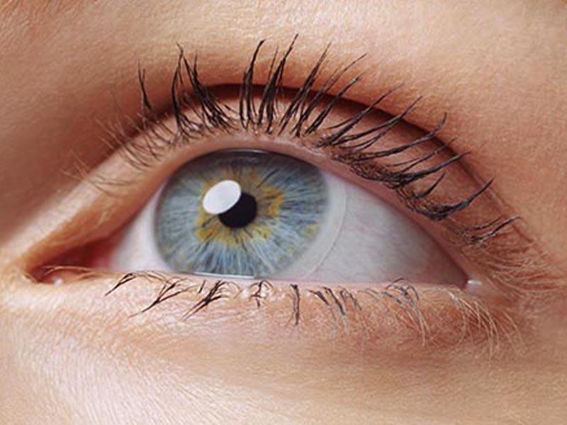 What Does the Lens of eye Do | Eye Lens Anatomy - Medical ...