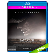 La mula (2018) BRRip 720p Audio Dual Latino-Ingles