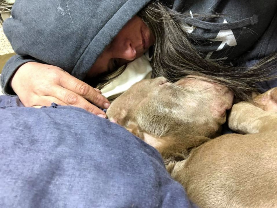 Woman Spends The Night In A Shelter Holding A Dying Dog