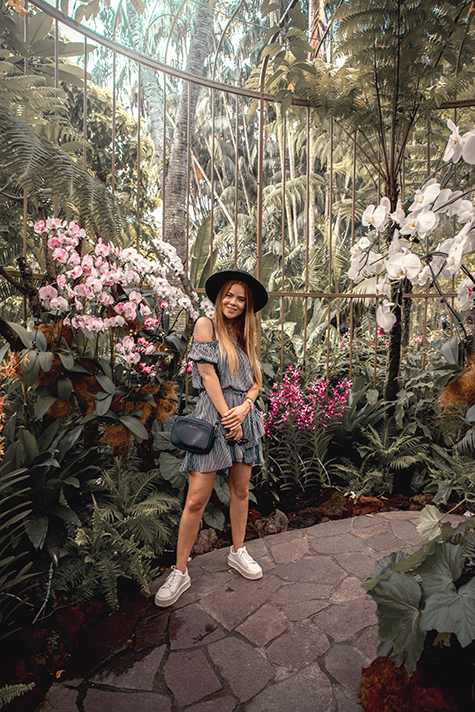Lion in the Wild, Kiara King, Singapore outfit, summer style, Singapore Botanic Gardens, National Orchid Garden