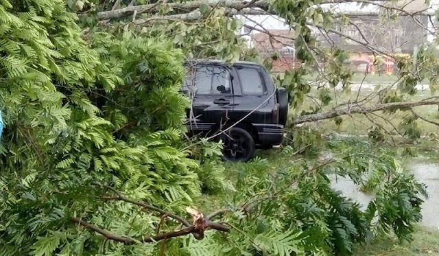 Puting Beliung di Wayjepara Lampung Timur Ternyata Sapu 492 Rumah
