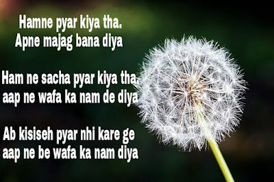 True Love Shayari photo