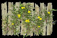 Cerca de madeira com flor em png