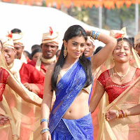 Shriya saran in blue saree from nuvvu nenu