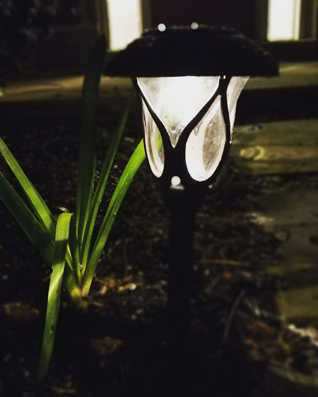 image of a solar light lighting my garden path at night
