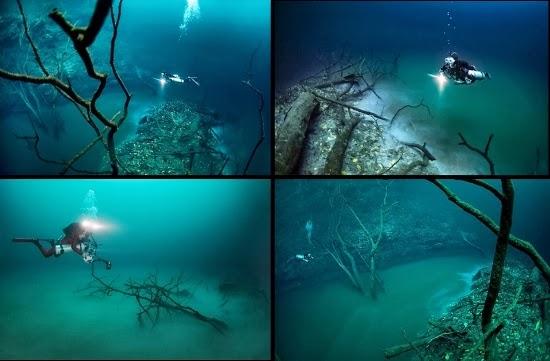 Resultado de imagen de Río bajo el agua, Cenote Angelita, México