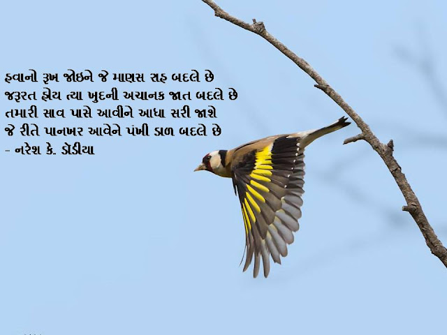 हवानो रूख जोइने जे माणस राह बदले छे  Gujarati Muktak By Naresh K. Dodia