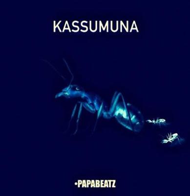 Dj Paparazzi - Kassumuna (Afro house) 2019 [DOWNLOAD]