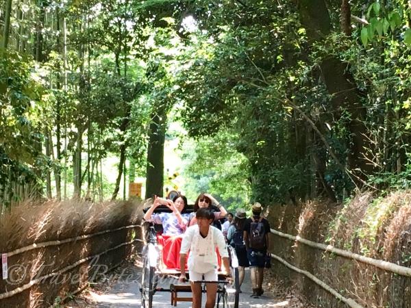 Bamboo Grove Rickshaw