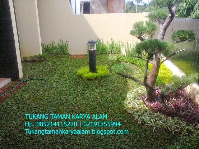 http://tukangtamankaryaalam.blogspot.com/2014/02/tukang-taman-murah-jasa-pembuatan-taman.html
