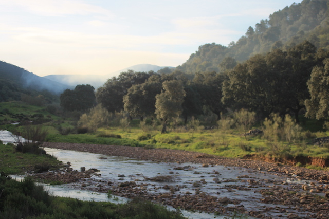 valle del Hoyegoso Nava de Ricomalillo Toledo