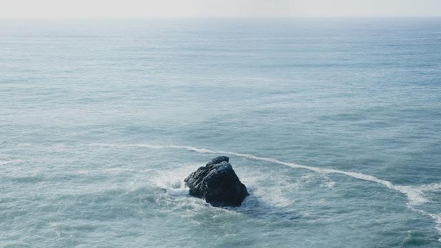 Lautan yang Memberi inpsirasi Ikan Hiu dan Ikan Teri
