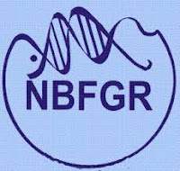 ICAR–National Bureau of Fish Genetic Resources, NBFGR, UP, Uttar Pradesh, Graduation, Data Entry Operator, DEO, freejobalert, Sarkari Naukri, Latest Jobs, nbfgr logo