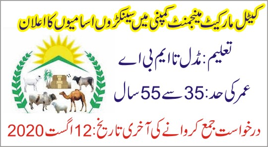 Cattle Market Management Company Jobs 2020