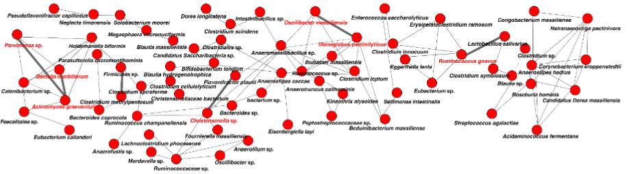 図:腸内共起ネットワーク